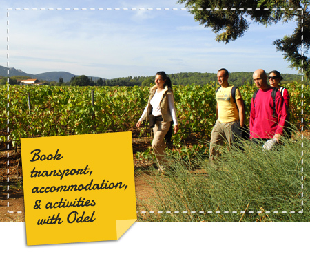 Book transport, accommodation, & activities with Odel Evasion !